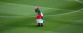 "FC ""Arsenal"" fires mascot for reasons of economy"