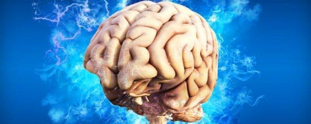 Нейробиолог Дин Бернетт: мозг человека склонен к самовредительству