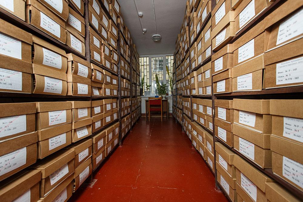 Картинки архива для презентации, живые