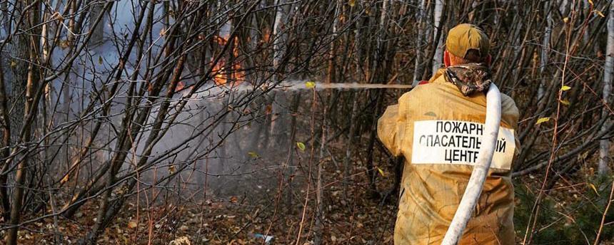 Лесной пожар около Магадана удалось ликвидировать