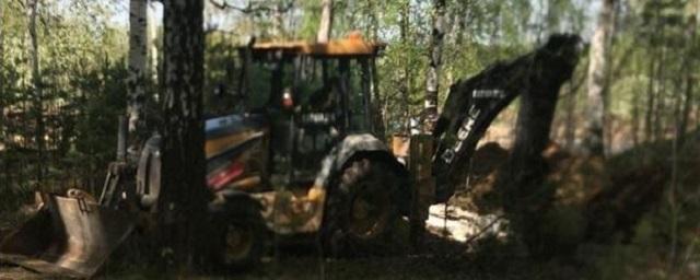 В Екатеринбурге жители Мичуринского микрорайона встали на защиту леса