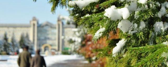Скверы и парки Тюмени зимой не будут посыпать солью