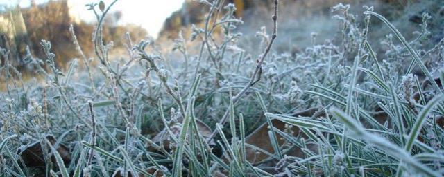 На Ставрополье в ночь на 15 октября ожидаются заморозки