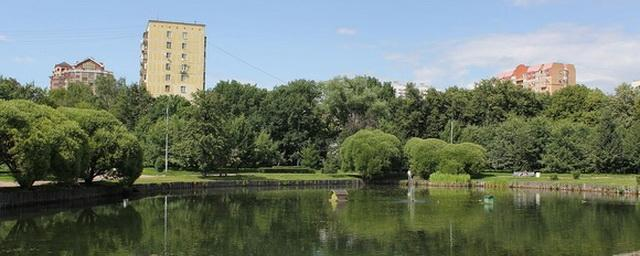 Власти Подмосковья отказались застраивать химкинский парк «Дубки»