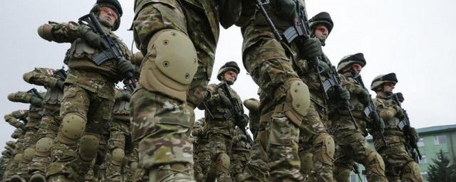 Немецкие военные в Литве стали жертвой фейка