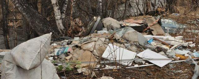 Омские экологи обнаружили десятки незаконных свалок