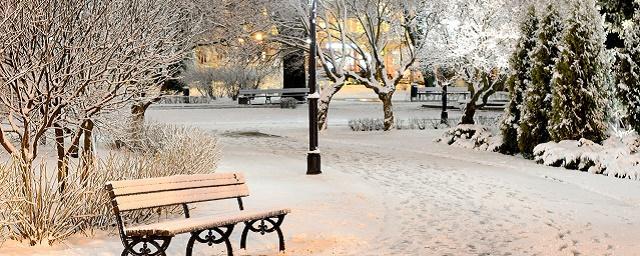 Роман Вильфанд: Зима в Москве не будет суровой
