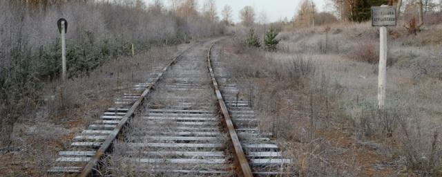 В Березниках злоумышленники украли железнодорожные рельсы