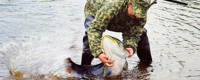 штрафы за ловлю рыбы на удочку