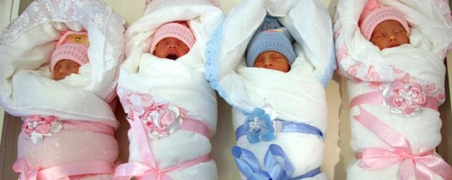 картинки младенцев из роддома