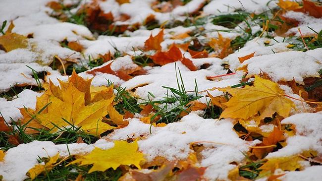 Снег в москве и заморозки ожидаются в