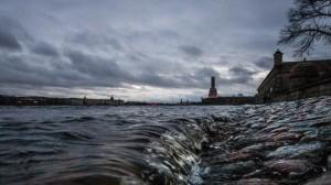 Dam was closed in Peterburg big