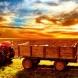 Минсельхоз: Растениеводство в 2014 году покажет рост в 3%