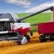 Урожай зерновых в России достиг 104,1 млн тонн