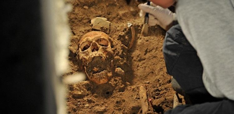Ученые расшифровали ДНК жившего в Сибири 45 тысяч лет назад человека