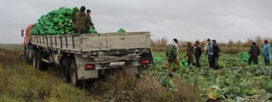 В Приморском крае подходит к концу уборочная кампания