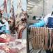 В Калининградской области открылся мясоперерабатывающий комплекс