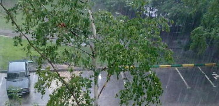 Москва-дожди подтопления