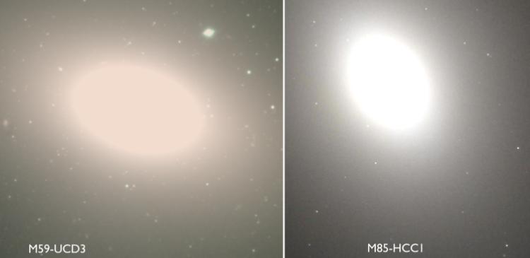 сверхплотные галактики